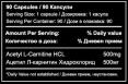 Acetyl L-Carnitine / 90 Caps