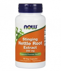 NOW Stinging Nettle Root Extract 250mg. / 90 VCaps.