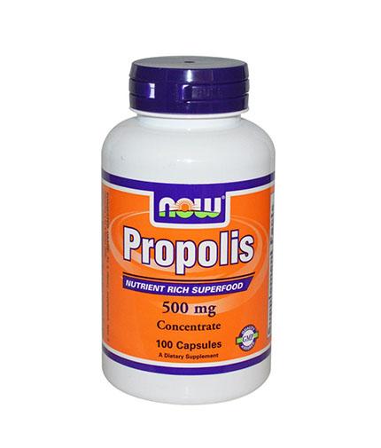 NOW Propolis 500mg. / 100 Caps.