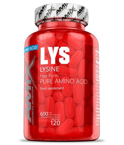 AMIX L-Lysine 120 Caps