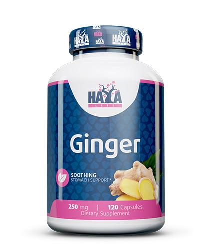 HAYA LABS Ginger 250mg. / 120 Vcaps.