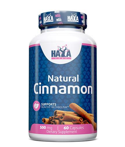 HAYA LABS Natural Cinnamon 500 mg / 60 Caps