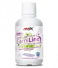 AMIX CarniLine Pro Fitness 2000 / 480ml