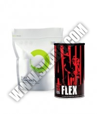 PROMO STACK Joint Health 6