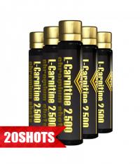 Z-KONZEPT L-Carnitine 2.500 Cromium shots / 20x25ml.