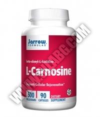 Jarrow Formulas L-Carnosine 500mg. / 90 Caps.