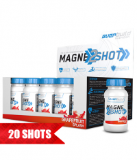 EVERBUILD Magne 2 Shot / 20x70ml