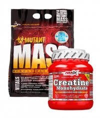 PROMO STACK BF High Gains STACK 3