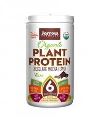 Jarrow Formulas Organic Plant Protein / Choco Mocha