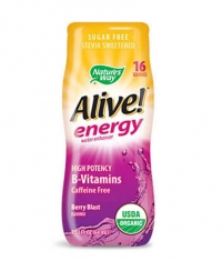 NATURES WAY Alive Energy / 64ml.