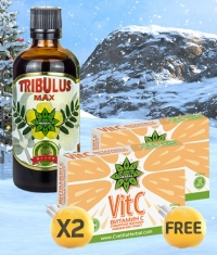 PROMO STACK Christmas 1+2 FREE Stack