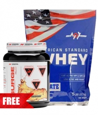 PROMO STACK Standard Surge 1+1 FREE