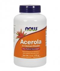 NOW Acerola Powder 170g.
