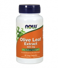 NOW Olive Leaf Extract 500mg / 60Caps.
