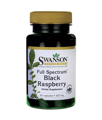 SWANSON Full Spectrum Black Raspberry 425mg. / 60 Caps