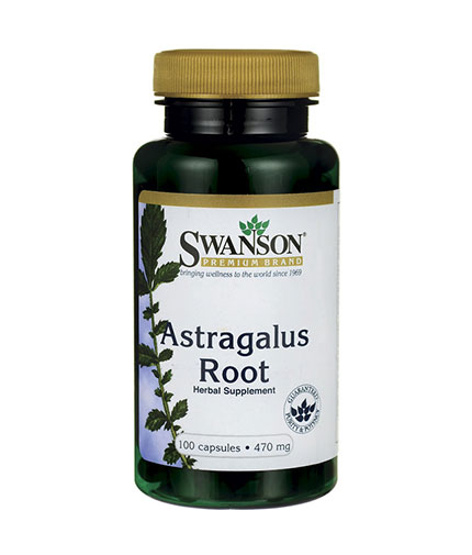 SWANSON Astragalus Root 470mg. / 100 Caps
