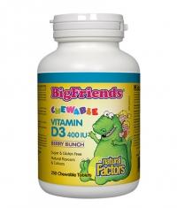 NATURAL FACTORS Bigfriends Vitamin D3 400iu / 250 Chew