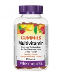 WEBBER NATURALS Multivitamin Gummies / 90 Gummies