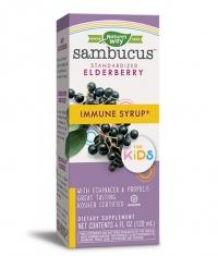 NATURES WAY Sambucus for Kids Immune Syrup / 120ml