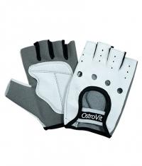 OSTROVIT PHARMA Men's Training Gloves