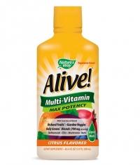 NATURES WAY Alive! Multi-Vitamin Max Potency / 900 ml