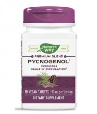 NATURES WAY Pycnogenol 50 mg / 30 Tabs