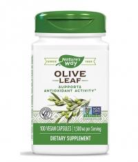 NATURES WAY Olive Leaf 500 mg / 100 Caps