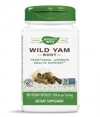 NATURES WAY Wild Yam Root 425 mg / 180 Caps