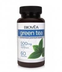 BIOVEA Green Tea 500 mg / 60 Caps