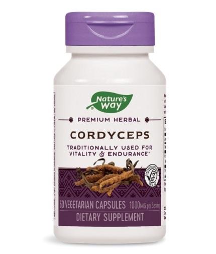 NATURES WAY Cordyceps Standardized 60 Caps.