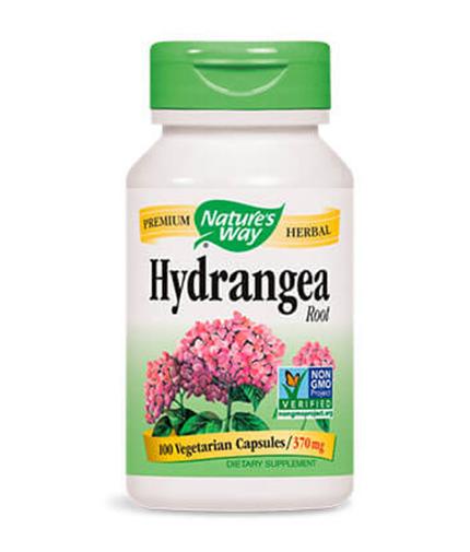 NATURES WAY Hydrangea Root 100 Caps.