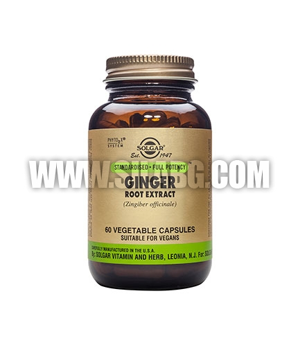 SOLGAR Ginger Root Extract, S.F.P. 60 Caps.