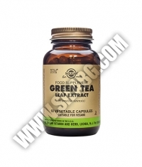 SOLGAR Green Tea Leaf Extract, S.F.P. 60 Caps.