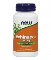 NOW Echinacea 400mg. / 100 Caps.