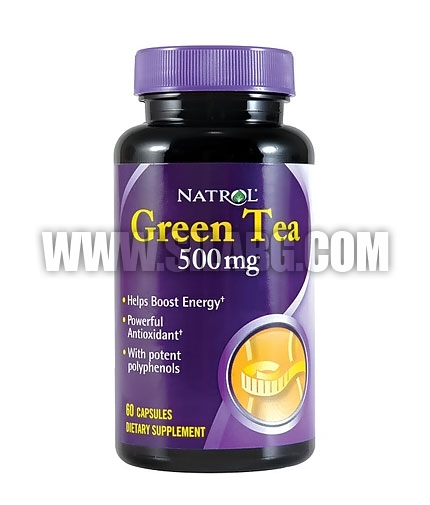 NATROL Green Tea 500 mg. / 60 Caps.