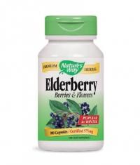 NATURES WAY Elderberry Berries & Flowers 100 Caps.
