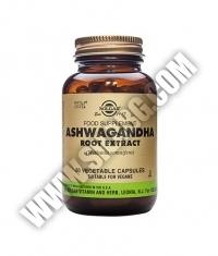 SOLGAR Ashwagandha Root Extract, S.F.P. 60 Caps.