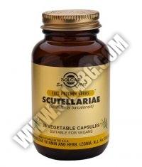 SOLGAR Scutellariae F.P. 50 Caps.